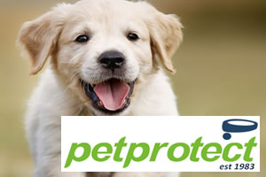 Pet Protect - Dog and puppy insurance