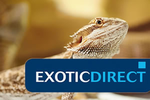 Exotic Direct - Reptile, lizard and snake insurance