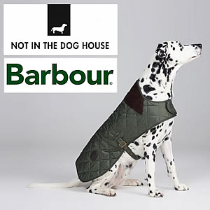 Not In The Dog House - Dog Fashion