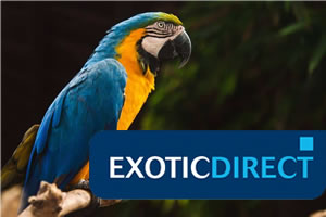 Exotic Direct - Parrot, Cockatoo and exotic pet insurance