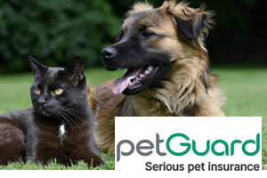 Pet Guard - Dog and cat pet insurance provider